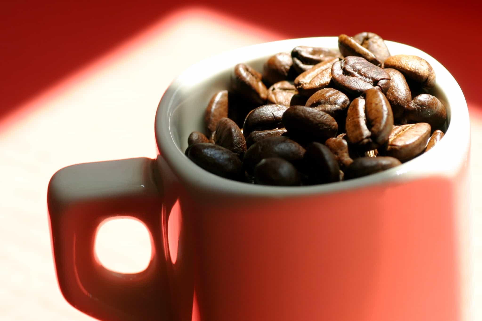 מיקרו אינה 9 של יורה- כל מה שניתן לבקש במכונת קפה